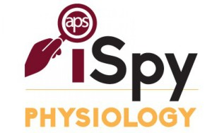 cropped-cropped-aps-ispy-logo_final.jpg