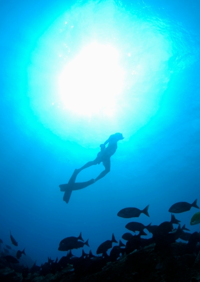 Freediver 2