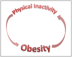 physical-inactivity-less-white-with-border
