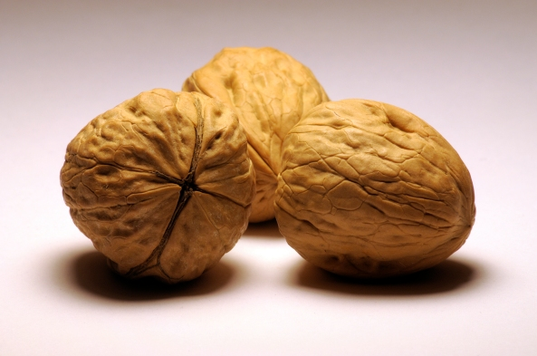 Walnuts_by_RustedStrings
