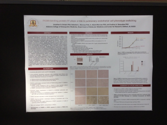 I also presented data on my pulmonary hypertension project as part of the Endothelial Cell Biology poster session Wednesday afternoon.